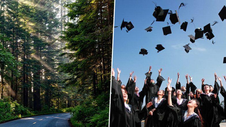 Сургууль төгсөж буй хүн бүр 10 мод тарих хууль санаачилжээ
