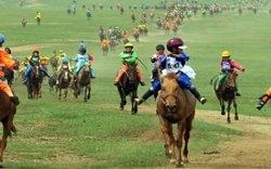Иргэд уяач нар Хурдан морь унаач хүүхдээ ямар үнэлгээгээр даатгуулахаа даатгагчтай харилцан тохиролцоно