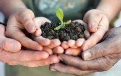 """""""Эрүүл хөрс-Эрүүл орчин"""" өртөөчилсөн өдөрлөгийг дүүрэг бүрт зохион байгуулна"""