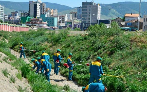 Харшилтай монголчууд, шарилжтай Улаанбаатар