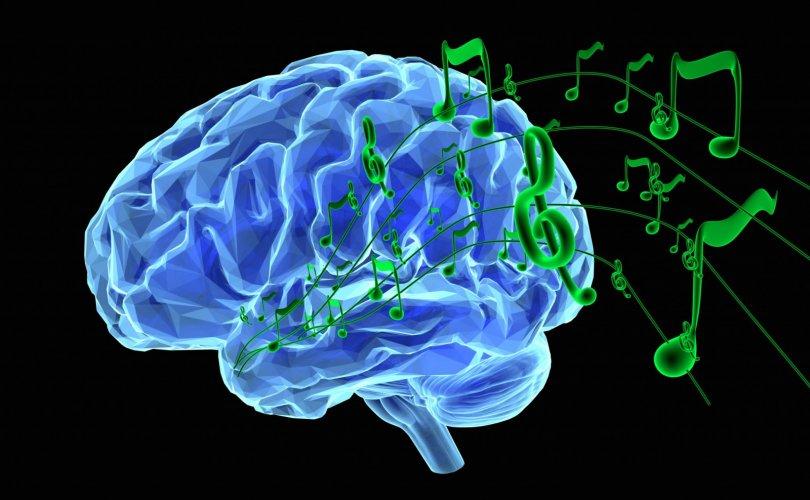 Хөгжмийн боловсролтой хүүхэд математиктаа сайн байдаг