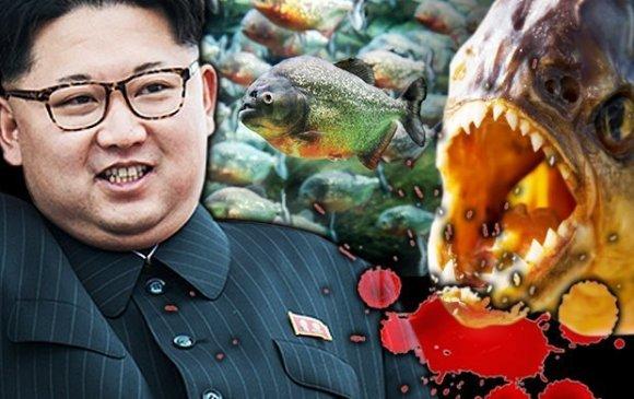 Ким Жон Ун генералаа махчин загасанд өгсөн үү?