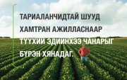 Ургамлын үрийг хүнсний бүтээгдэхүүн болгож, хүмүүсийг шим тэжээлээр хангаж байна