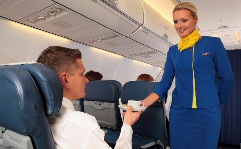 Онгоцны үйлчлэгчийн тухай олны мэдэхгүй зүйлс
