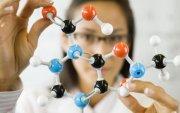 Инфографик: Хүний биед амт мэдрэх 2000 рецептор бий