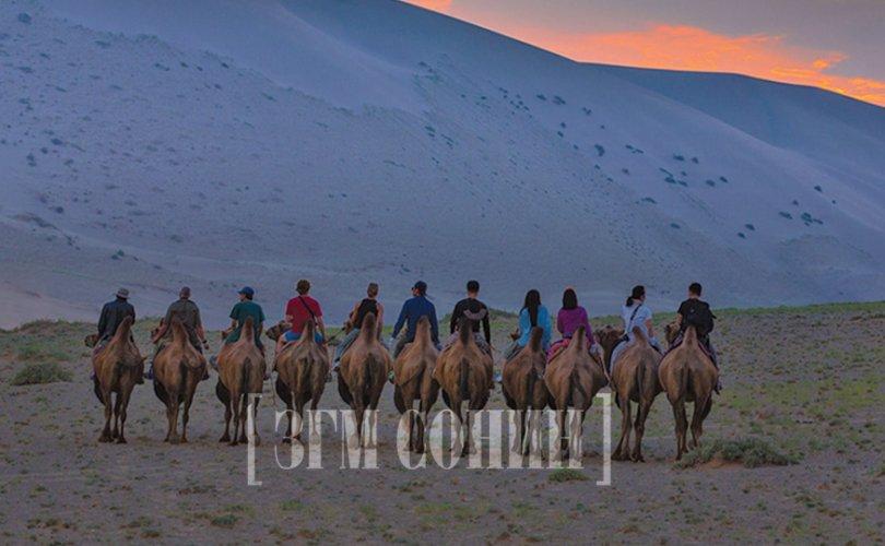 Дэлхийн дулаарал жуулчдыг монгол руу чиглүүлнэ