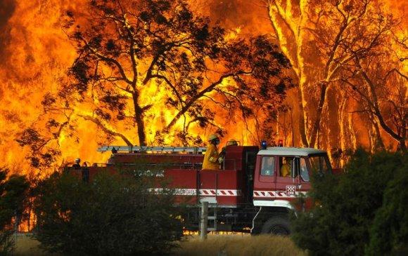 ФОТО: Хуурайшилтын улмаас Сибирьд ойн түймэр ассан гэв