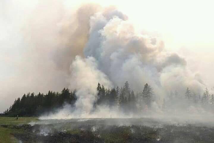 Түймрийн утаа эрүүл мэндэд сөргөөр нөлөөлдөг