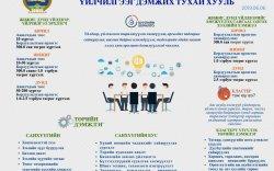 Инфографик: Жижиг, дунд үйлдвэр, үйлчилгээг дэмжих тухай хуулийн танилцуулга