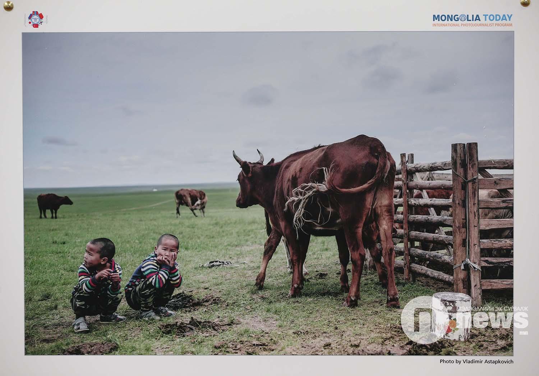 Mongolian today 2019 (21)