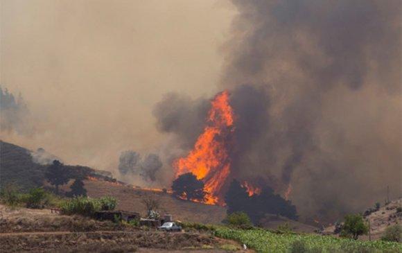 Гран Канариад арлын түймрээс болж 4000 хүн дүрвэв