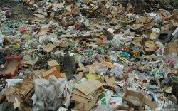 Москва хотын хог хаягдлын хэмжээ 2,6 дахин нэмэгдсэн байна