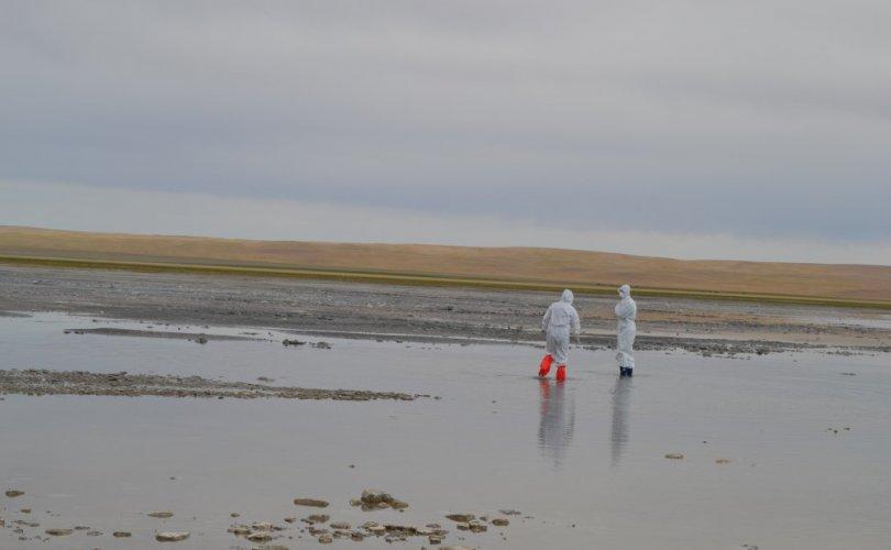 Шинжилгээгээр нуурын ус, хөрс хүнд металлын бохирдолтой, цианит илрээгүй