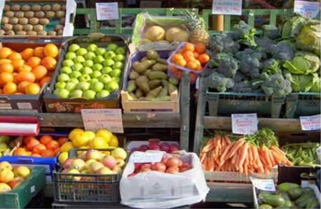 Жимс, хүнсний ногооны 99,8 хувь нь шаардлага хангажээ