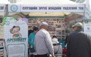 SOS: Монголд жилд 500 хүн амиа хорлож байна