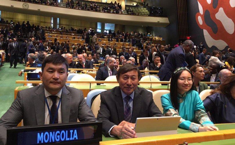 """НҮБ-ын хуралд """"Ногоон паспорт"""" санаачлагыг үндэсний туршлага болгон танилцуулжээ"""