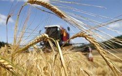 Ургац хураалтад ажиллах хүчний хомсдол үүсчээ