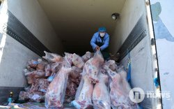 Нийт 10.1 мянган тонн мах экспортолжээ