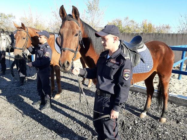 Цагдаагийн морин эргүүлийг Волгоградад сэргээв