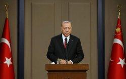 Эрдоган ирэх сарын 13-нд АНУ-д айлчилна гэж мэдэгдэв