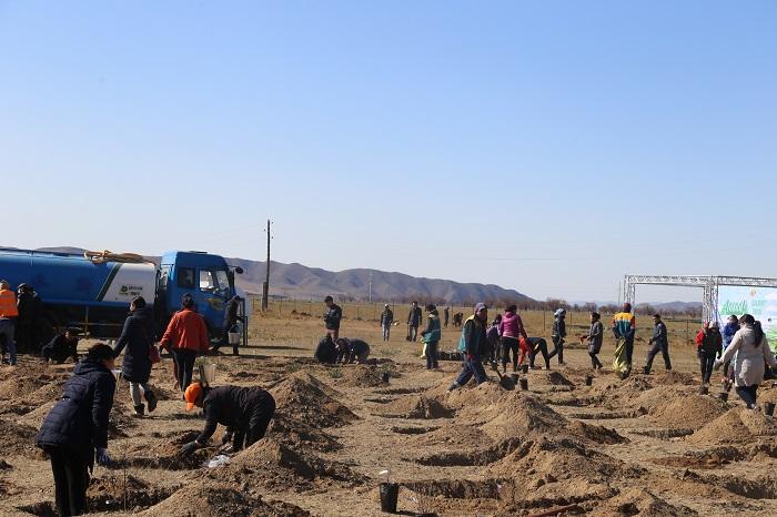 """""""Мод тарих үндэсний өдөр""""-өөр Хан-Уул дүүрэг 700 ширхэг мод, бут, сөөг тарилаа"""