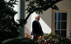 Трамп намтарт нь хар толбо үлдэхээс айж буйгаа илэрхийлжээ