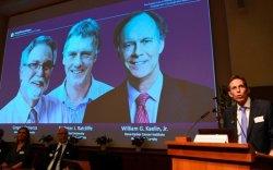 Нобелийн шагналтнуудын нэрс тодорч эхэллээ