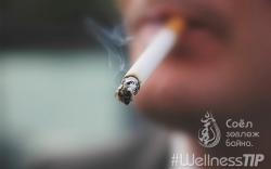 Тамхи дасгалын үр дүнд ямар нөлөөтэй вэ?