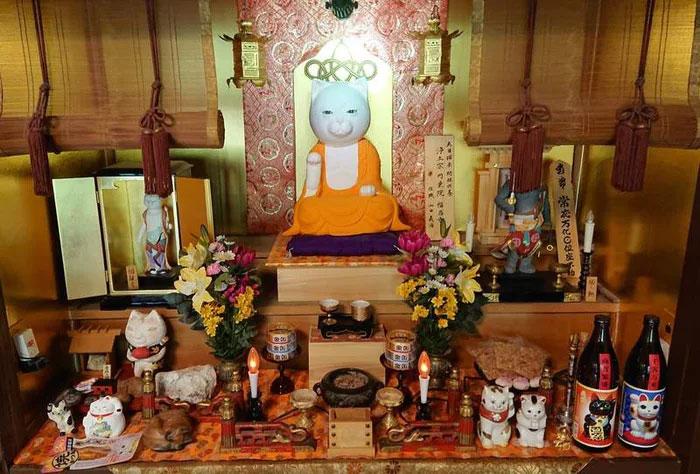 Японд байдаг муурын сүм