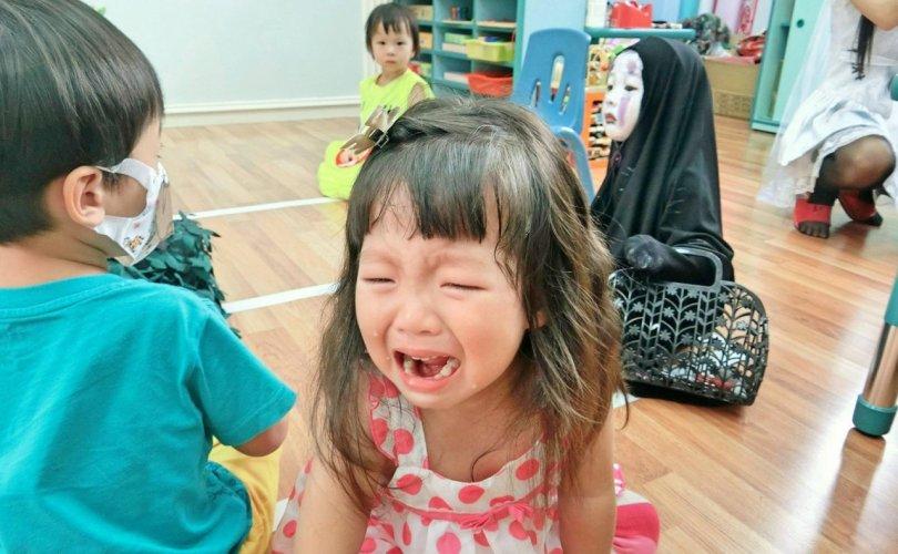 """""""Аймар"""" охин энэ жил дүүтэйгээ эргэн ирлээ"""