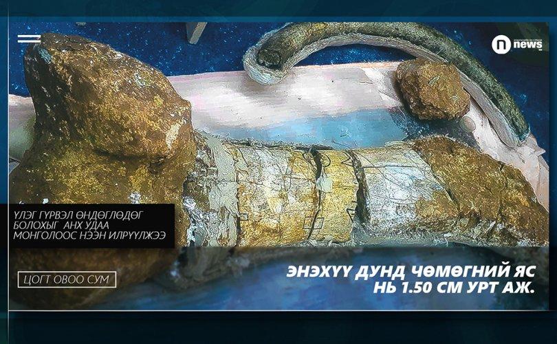 Цогт Овоо сумын төвөөс үлэг гүрвэлийн шинэ олдвор олджээ