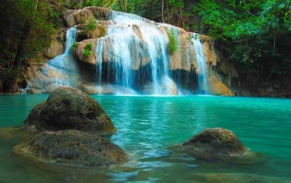 ЗӨВЛӨГӨӨ: Байгаль орчноо аврахад нэн тустай 20 алхам