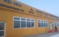 Хятад компани монгол ажилчдаа хууль бусаар торгодог байжээ