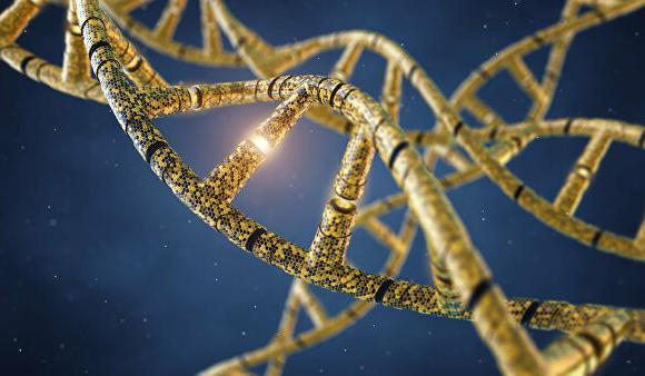 Орос, Беларусь хамтран ДНК-гийн банк байгуулна