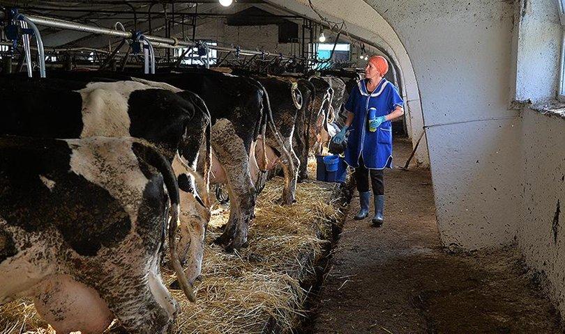 Оросын тосгоны эмэгтэйчүүд богиносгосон цагаар ажиллана