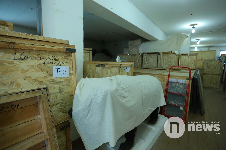 Байгалийн түүхийн музейн үзмэр хадгалалт (6)