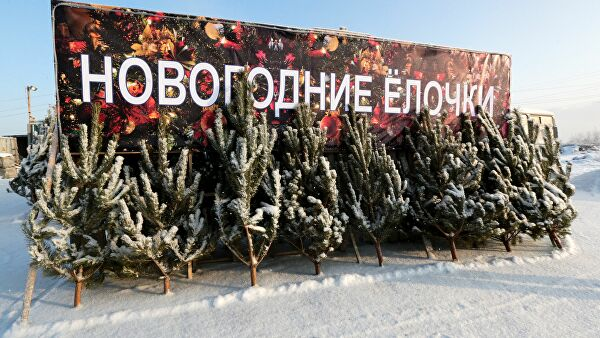 Москва, Барнаулд гацуур хамгийн үнэтэй байна