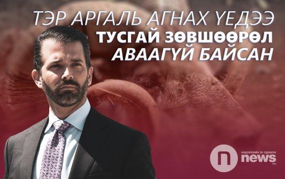 Трампын хүү Монголд ирээд аргаль агнаад буцжээ