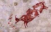 44 мянган жилийн тэртээх хадны зураг олджээ