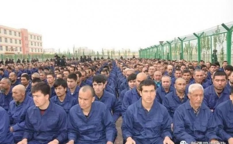 Шинжаанд хоригдож байсан Уйгуруудыг чөлөөлсөн гэв