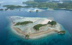 Палау улс шүрэн хаданд нарны тос хэрэглэхийг хориглов