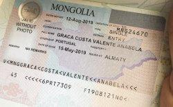 Визийн зөвшөөрлийн кодыг мессежээр илгээнэ