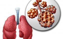 Хятадад дэгдсэн уушгины хатгалгаа БНСУ-д бүртгэгджээ
