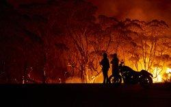 Австралийн түймрийг өсвөр насныхан тавьжээ