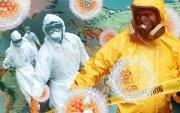 Хятадын коронавирусын халдвар АНУ-д илэрчээ