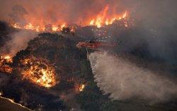 Австралийг нөмөрсөн түймэр дүрэлзсэн хэвээр байна
