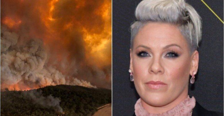 Дуучин Пинк Австралийн түймрийг унтраахад 500 мянган ам.доллар хандивлана