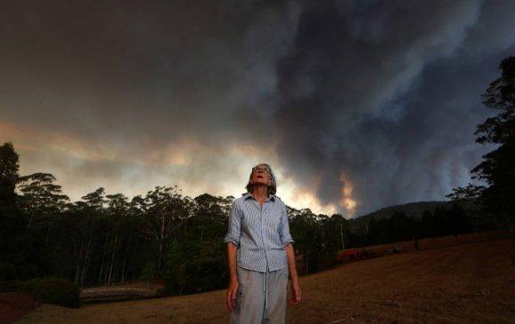 Түймрийн гамшиг нүүрлэсэн Австралид бороо орж эхэллээ