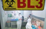 Хятадууд аюултай вирусийн халдварыг нууцалж байна уу?
