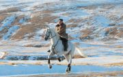 Ким Жон Ун цагаан морьдоо ОХУ-аас 75 мянган ам.доллараар авчээ